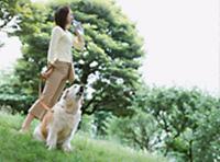 ペットの長寿を願って獣医さんが使っている長寿村の東洋ハーブ